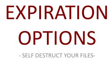 Expiration Options Logo